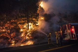 Firefighters work to prevent the Rim Fire from jumping Highway 120 near Buck Meadows, California