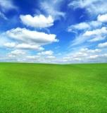 green-field-blue~fs1584925