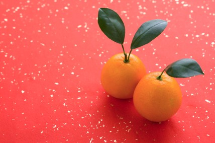 Two oranges on paper background