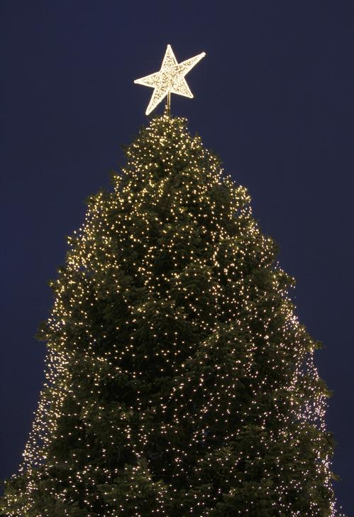 A decorated fire tree is pictured at a Christmas market on its opening day in Hamburg
