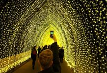 A visitor to the Sydney Botanical Garden's inaugural contribution to the Vivid Sydney light festival takes a picture of the 'Cathedral of Light' during a preview of the annual interactive light installation and projection event around Sydney, Australia May 25, 2016. REUTERS/Jason Reed TPX IMAGES OF THE DAY