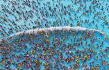People cool off at a water park, in Nanjing, Jiangsu province, August 1, 2015. Temperature hit 35 degrees Celsius (95 degrees Fahrenheit) in Nanjing on Saturday. Picture taken August 1, 2015. REUTERS/China Daily CHINA OUT. NO COMMERCIAL OR EDITORIAL SALES IN CHINA TPX IMAGES OF THE DAY