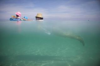 Retiree Madeline Barcelo swims at the beach with her granddaughter in Varadero, Cuba, August 26, 2015. Cubans are flocking to the beach in record numbers before a possible end to the U.S. travel ban that would open the gates to American tourists and bump up prices. Picture taken August 26, 2015. REUTERS/Alexandre Meneghini TPX IMAGES OF THE DAY