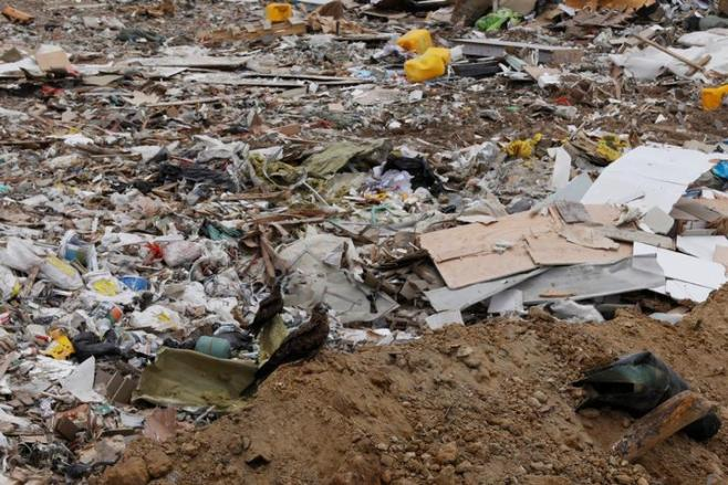 Birds are seen beside piles of garbage at a landfill at Tseung Kwan O district in Hong Kong, China June 9, 2017. Picture taken June 9, 2017. REUTERS/Tyrone Siu