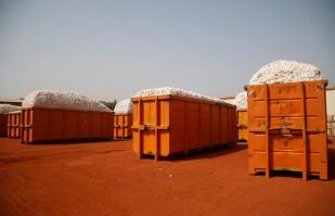 Containers filled with cotton are pictured at Sofitex, Burkina Faso's biggest cotton company, in Bobo-Dioulasso, Burkina Faso March 9, 2017. Picture taken March 9, 2017. To match Special Report MONSANTO-BURKINA/COTTON REUTERS/Luc Gnago
